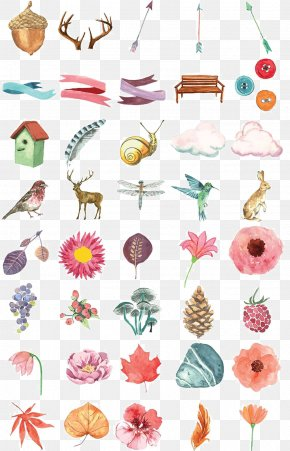Hand-painted Watercolor Flower Plant Animal Vector Material - Flower Euclidean Vector Clip Art PNG