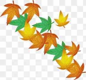 Defoliation - Maple Leaf Illustration PNG