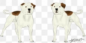 Colossus - Dog Breed Pet Companion Dog Canidae PNG