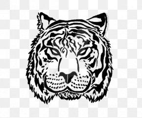 Tiger - Tiger Lion Image Illustration PNG