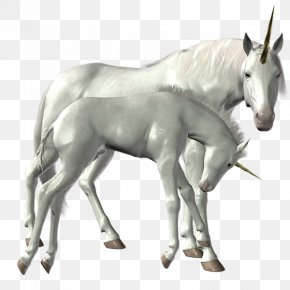 Unicorn - Unicorn Horse Icon PhotoScape PNG