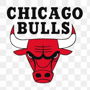 Bull Logo Cliparts - 1998u201399 Chicago Bulls Season Windy City Bulls NBA Boston Celtics PNG