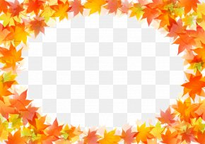 Autumn Leaves Border - Autumn Leaf Color Drawing PNG