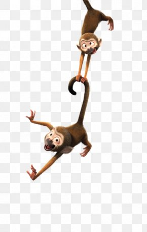 Play The Monkey - Monkey Clip Art PNG