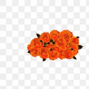 Rose - Beach Rose Flower Bouquet Clip Art PNG