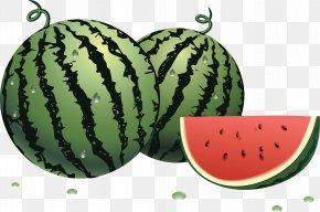 Watermelon Image - Watermelon Fruit Centimeter PNG