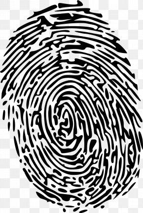 Fingerprint Free Image - Fingerprint Computer File PNG
