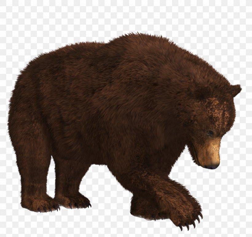 Polar Bear American Black Bear Kamchatka Brown Bear Clip Art, PNG, 922x866px, Bear, American Black Bear, Brown Bear, Carnivoran, Fauna Download Free