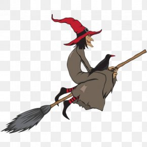 Cartoon Old Witches And Crows - Broom Witchcraft Stock Illustration Illustration PNG