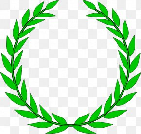 Small Wreath Cliparts - Laurel Wreath Bay Laurel Crown Clip Art PNG