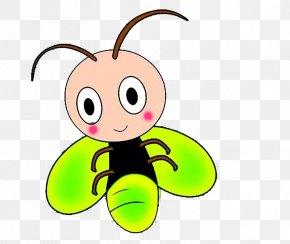 Green Firefly - Cartoon Animation Firefly PNG