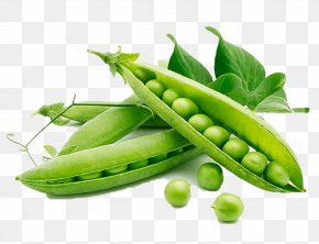 Vegetables - Snow Pea Organic Food Vegetable Legume PNG