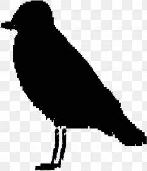 Chicken Silhouette Vector Vector Graphics - Clip Art Vector Graphics Goose Beak Image PNG