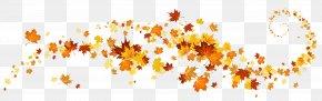 Autumn Leaves Decoration Clipart - Autumn Leaf Color Clip Art PNG