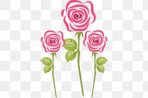 Rose - Garden Roses Cut Flowers PNG