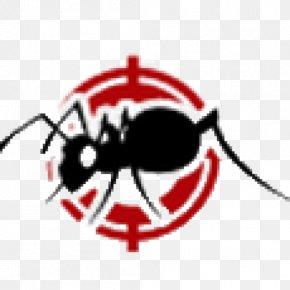 Responsible Pest Control - Premier Pest Management Inc. Southwest Florida Pest Control Ladybird Beetle PNG