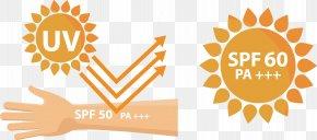 Arm Skin Sunscreen - Sunscreen Ultraviolet Euclidean Vector PNG