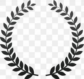 Vegetable Lace - International Puerto Rican Heritage Film Festival Award PNG
