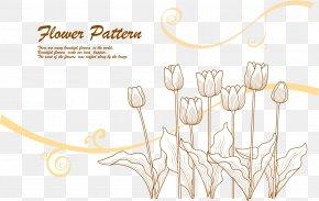Vector Lines Tulip Flower 2 - Line Euclidean Vector Flower PNG