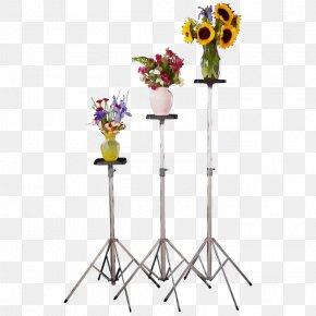 Plant Vase - Cut Flowers Flowerpot Flower Vase Plant PNG