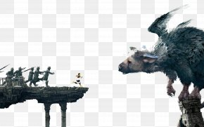 Claw - The Last Guardian PlayStation 4 The Ico & Shadow Of The Colossus Collection Video Game PNG