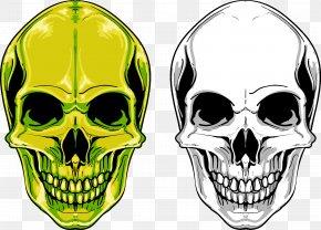 Skull - Skull Euclidean Vector PNG