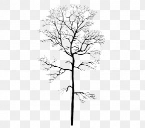 Winter Tree Trunk - Trunk Tree Winter Computer File PNG