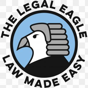 Lawyer - Lawyer Eagle Law Firm Practice Of Law PNG