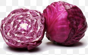 Vegetable - Red Cabbage Capitata Group Brussels Sprout Mulberry Vegetable PNG