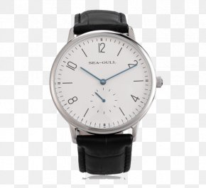 Watch Real - Amazon.com Gulls Automatic Watch Water Resistant Mark PNG