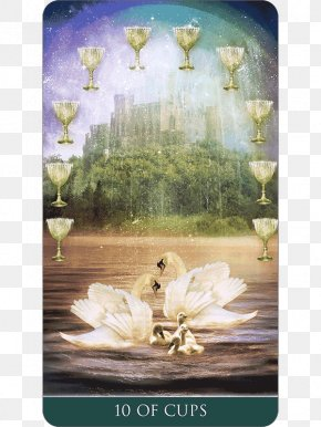 Thelema - Tarot Ten Of Cups Suit Of Cups Queen Of Cups Playing Card PNG