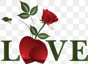 LOVE - Valentine's Day Heart Desktop Wallpaper PNG