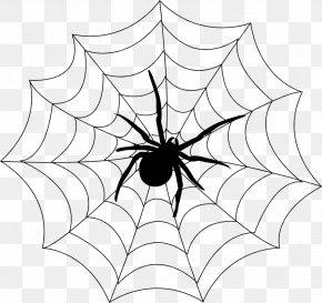 Spider Web - Spider Web Spider Monkey Spinneret Clip Art PNG