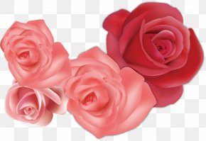 Creative Pink Roses Sea - Garden Roses Beach Rose Flower Euclidean Vector PNG
