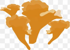 Fungi - Clip Art Fungus Edible Mushroom Fly Agaric PNG