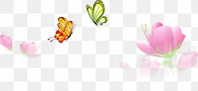 Spring Flower Butterfly - Butterfly Flower Euclidean Vector PNG