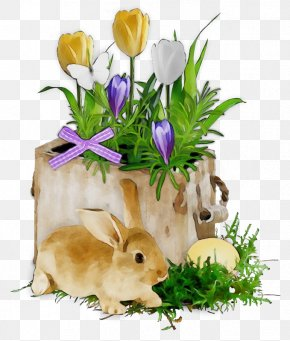 Easter Bunny Domestic Rabbit - Easter Bunny PNG