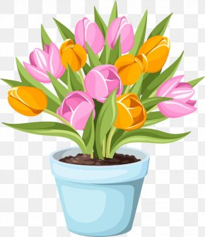 Pot Of Tulips Picture Material - Flowerpot Tulip Stock Photography PNG