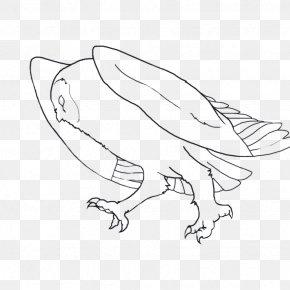 Chicken - Chicken Sketch Line Art Illustration Landfowl PNG