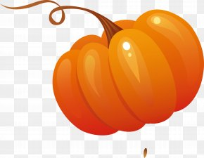 Vegetable Decoration Designer - Vegetable Pumpkin Salad PNG