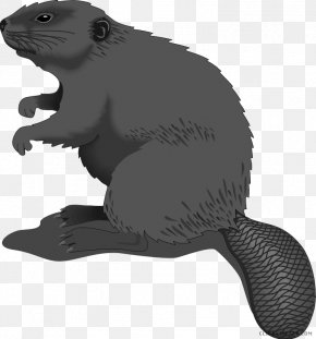 Brown Beaver - Clip Art Free Content Vector Graphics Openclipart American Beaver PNG