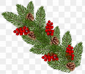Transparent Christmas Pine Branch Clip Art - Christmas Ornament Clip Art PNG
