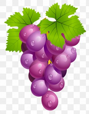 Grapes With Leaves PNG Clipart Picture - University Of Virginia Virginia Cavaliers Men's Basketball Virginia Cavaliers Football Clip Art PNG