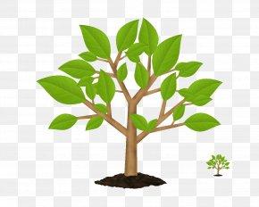 Trees - Tree Symbol Green Clip Art PNG