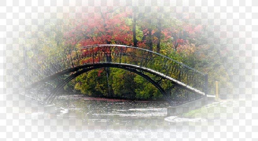 Desktop Wallpaper Landscape Clip Art Png 800x449px Landscape Blog Bridge Computer Health Download Free