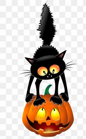 Black Cat Pumpkin - Black Cat Halloween Cartoon Clip Art PNG