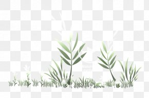 Eco-friendly - Grasses Plant Stem Leaf Commodity Branching PNG