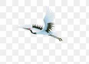Flying Red-crowned Crane PNG