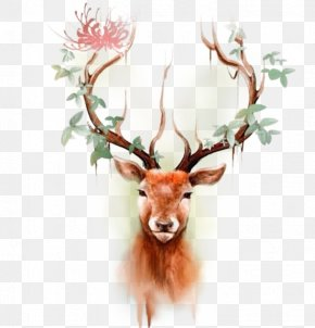Color Reindeer Head - Deer Elk Moose Tattoo Paper PNG