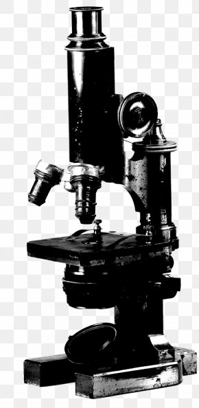Microscope - Microscope Stock Photography Stock.xchng Image Royalty-free PNG
